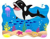 Killer whale carton — Stock Vector