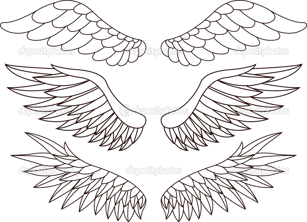 Vector Illustration Of Wing silhouette — Stock Vector #10353692