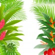 Royalty-Free Stock Vector Image: Beautiful tropical forest background
