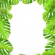 Tropical leaf backgound — Stock Vector