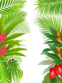 Beautiful tropical forest background — Stock Vector
