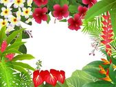 Tropical plant background — 图库矢量图片