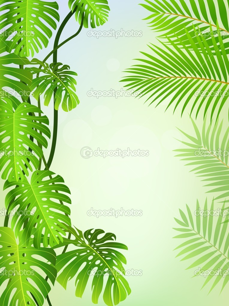 Vector Illustration Of Tropical leaf background — Stock Vector #10604959