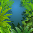 Tropical leaf background — Stock Vector #10673271