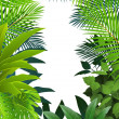 Tropical leaf background — Stock Vector