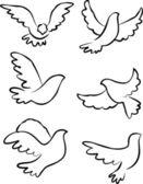 Dove vector — Stock Vector