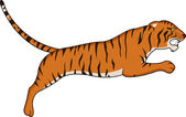 Tiger jumping — Stock Vector