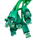 Network cables - vertical close up — Stock Photo
