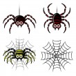 Spider set & web — Stock Vector