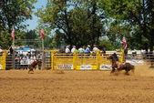 Rodeo Fun — Stock Photo