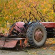 Stock Photo: Pear Tractor