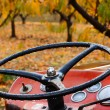 Royalty-Free Stock Photo: Pear Tractor