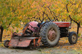Birne traktor — Stockfoto