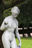 A beautiful statue in the garden — Стоковое фото