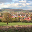 Постер, плакат: Panorama photo of the Pied Piper City hameln Niedersachsen Germany