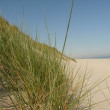 North sea beach on the island ameland in holland — Foto de Stock