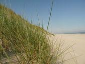 Nordsjön stranden på ön ameland i holland — Stockfoto