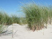 North sea beach on the island ameland in holland — Stock Photo