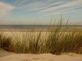 Nordsjön stranden i solnedgången på ön ameland i holland — Stockfoto
