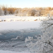 Stock Photo: River in winter forest