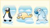 Polar animals: Polar bear, penguin and seal. — Stock Vector