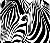 Zebra in Africa — Stock Vector