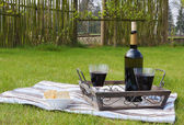 Bottle and two glasses of red wine on a tray in the garden — Stock Photo