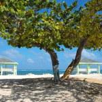 Постер, плакат: Caribbean Cayman Islands Beach