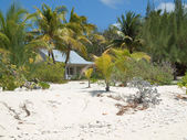 Beach House Grand Cayman — Stock Photo