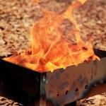 Bright fire in a brazier — Stock Photo #10199536