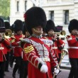 Massed Bands — Stock Photo