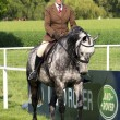 Royal Windsor Horse Show - Stock Photo