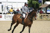 Royal Windsor Horse Show — Stock Photo