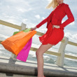 Young shopping woman with bags, sea background — Stock Photo