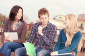 étudiants de niveau collégial multiculturelle — Photo