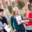 Multicultural College Students at Park — Stock Photo #9747024