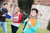 Mångkulturella högskolestudenter på park — Stockfoto