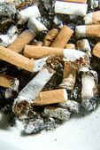 Cigarette butts — Stockfoto