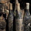 Stock Photo: Old bottles in cellar