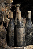 Old bottles in a cellar — Stock Photo