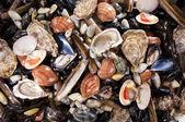 Mixed fish and sea food — Stockfoto