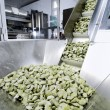 The fresh pasta industry - Stock Photo