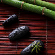 Zen stones and green bamboo — Stock Photo