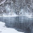 Winter forest river — Stock Photo