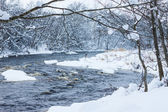 Winter river in snow with trees — Stock Photo
