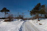 Snow rural road during winter time — Stockfoto