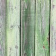 Grunge green painted plank textured background — Stock Photo