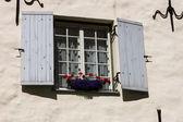 Window with flower box — Stock Photo