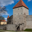 Stock Photo: Old fortification