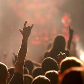 Concierto. contorno de los fans — Foto de Stock